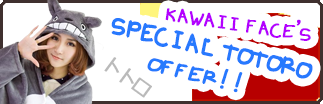Special Totoro Offer